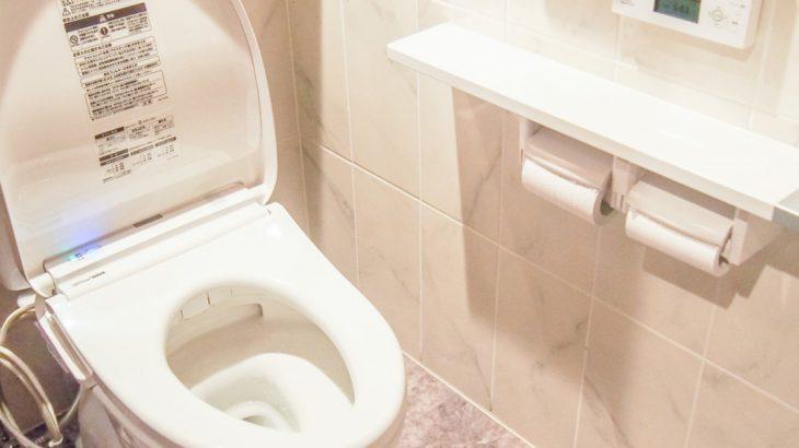 いつも使うからこそキレイに!正しいトイレ掃除の方法について